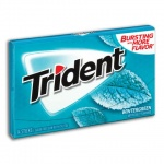 Trident Sugar Free Gum -Wintergreen 14 Sticks